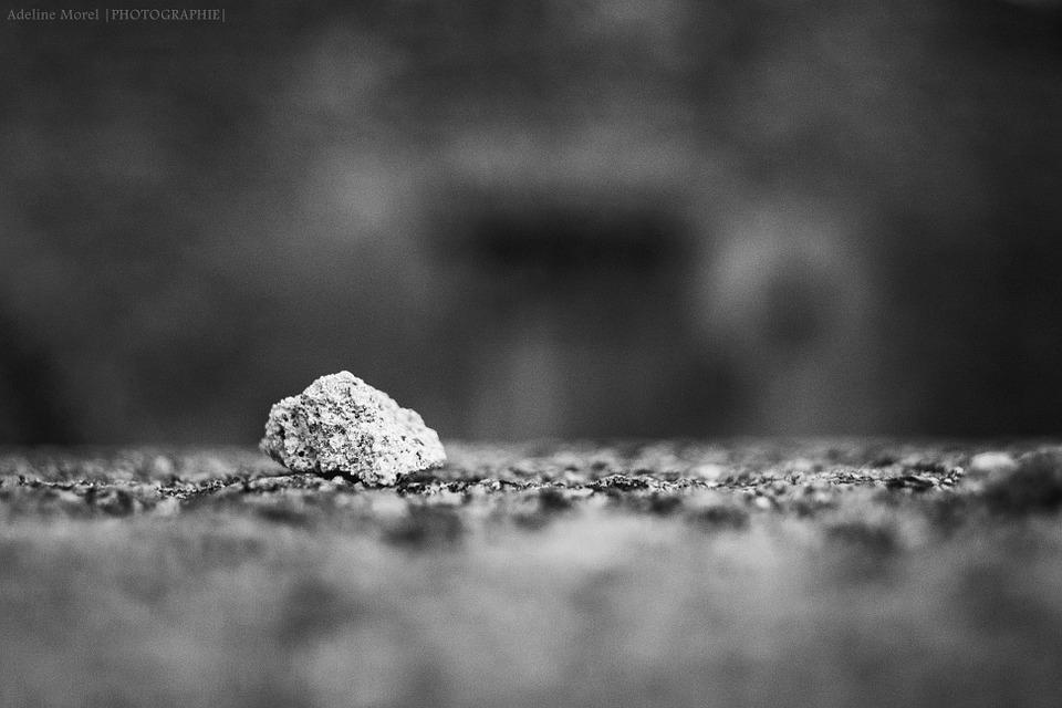 pierre caillou