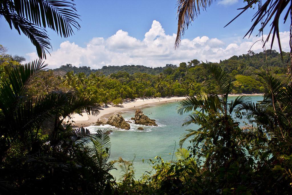 plage manuel paradisiaque tropicale palmier