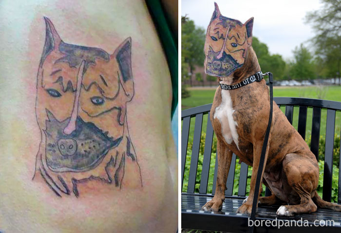 funny-tattoo-fails-face-swaps-comparisons-43-57b1b000e3d8b__700