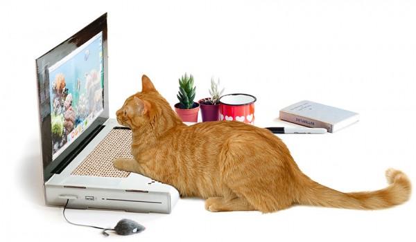 10-gadgets-improbables-pour-votre-chat-7