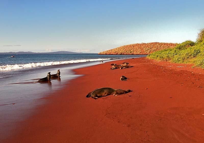 12-plages-incroyables-aux-particularites-peu-connues-7