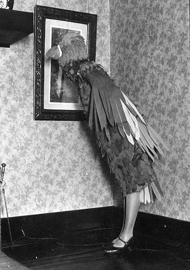 déguisement oiseau ancien