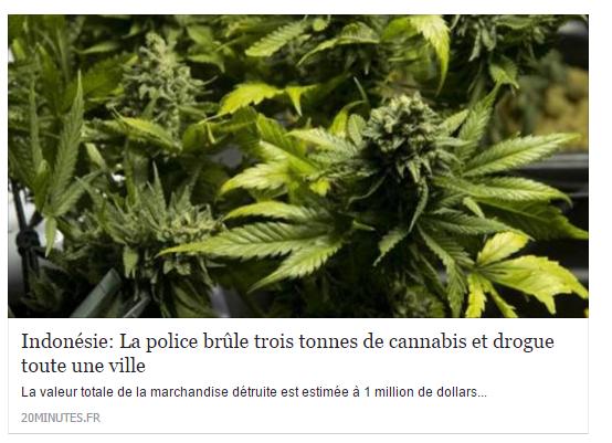 unes de magazines insolites cannabis