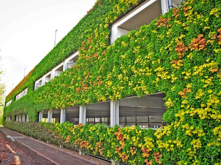 mur-vegetalise-angleterre