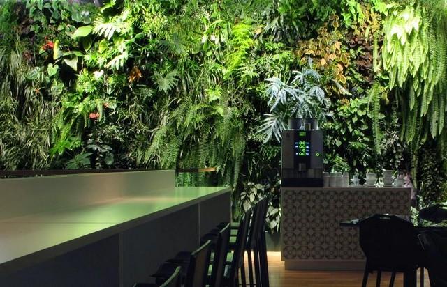 mur-vegetalise-stockholm2