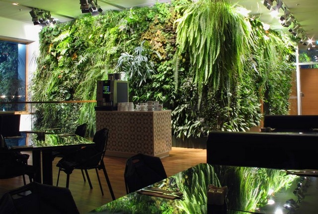 mur-vegetalise-stockholm3