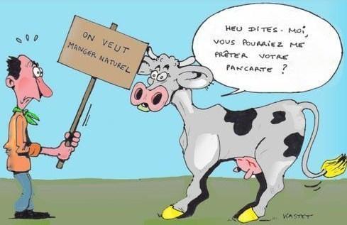 20 mini bd hilarantes sur le quotidien des animaux page 4 sur 4 - Vache normande dessin ...