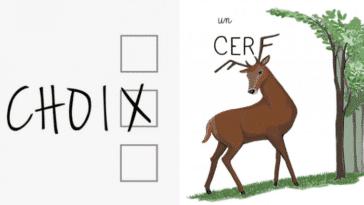 dessins pour éviter les fautes orthographe
