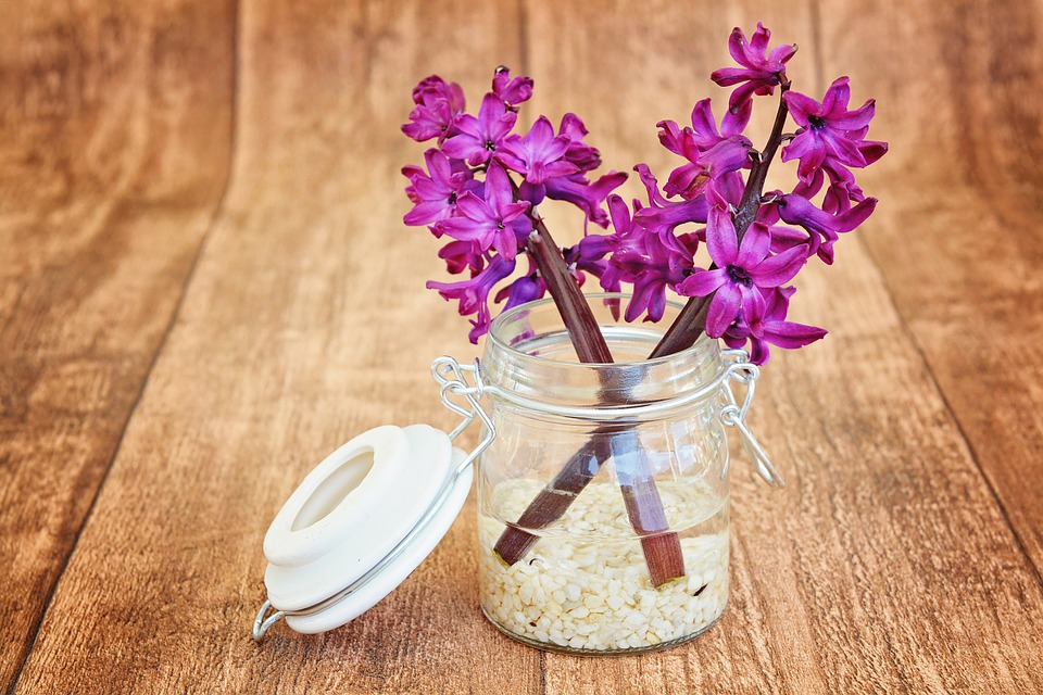 fleurs pot