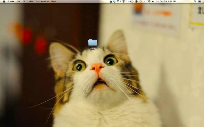 fonds écran originaux chat