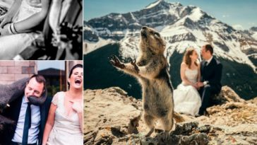 photos de mariage insolites