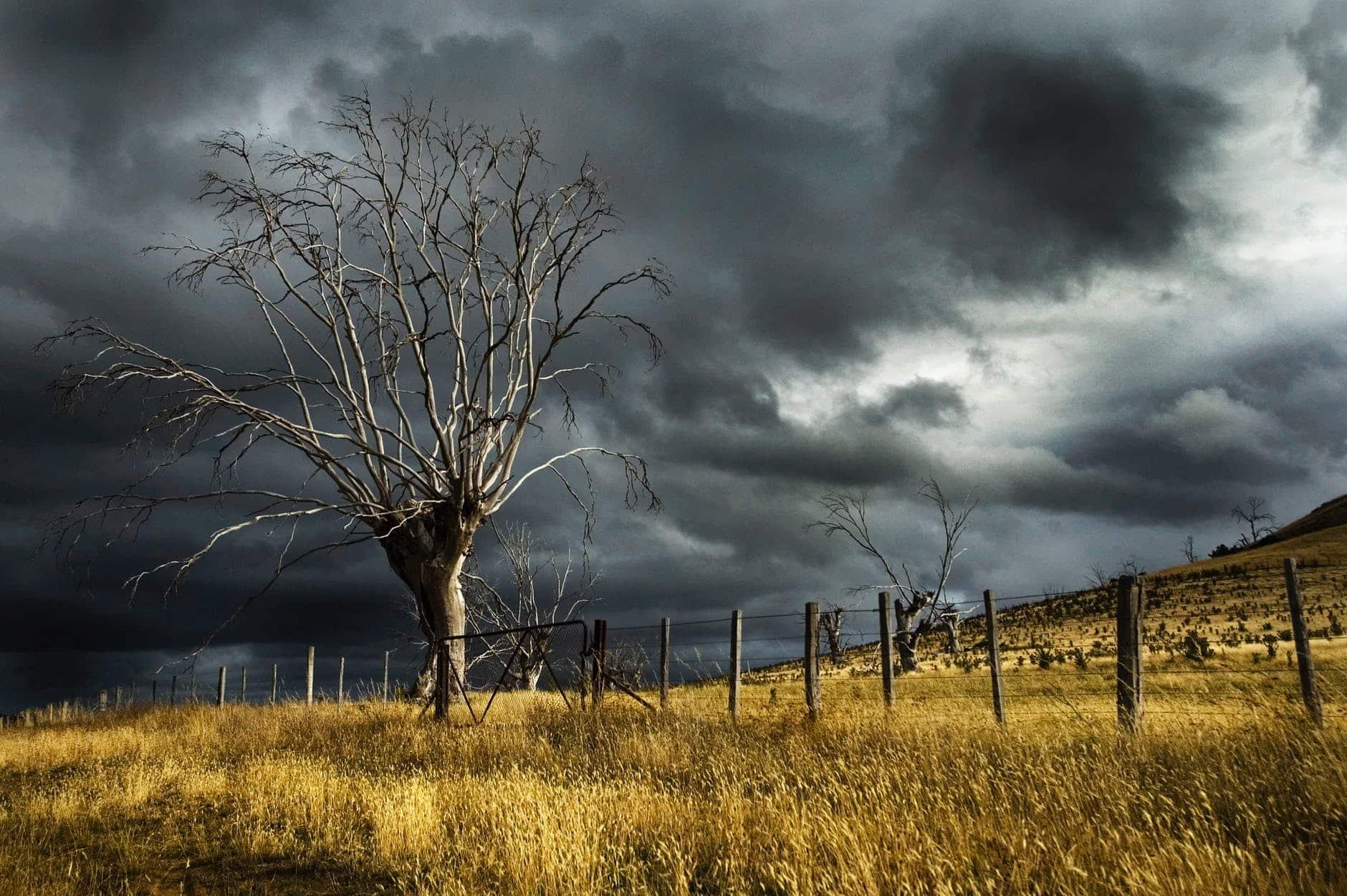peur de l'orage