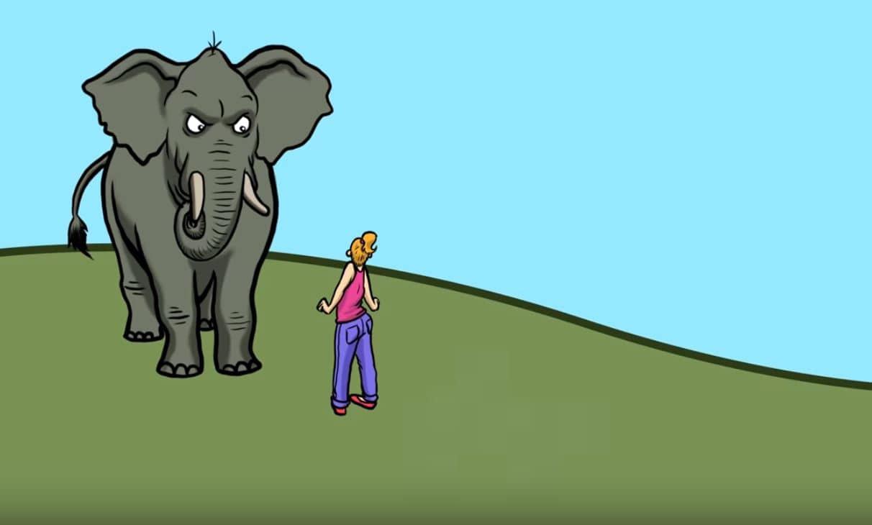 attaque animale éléphant