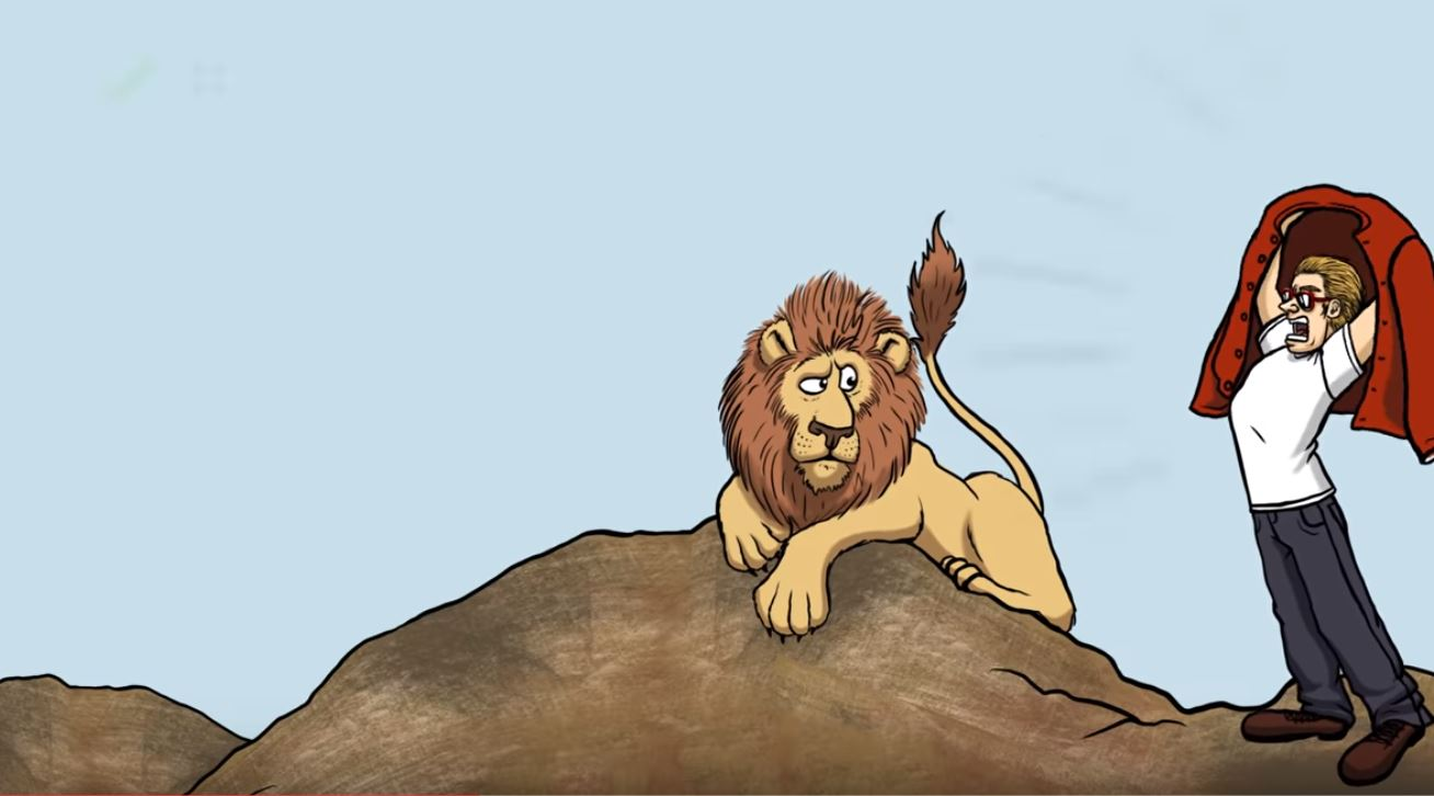 lion attaque