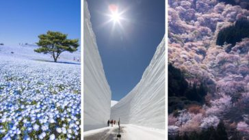 Japon nature photos incroyables