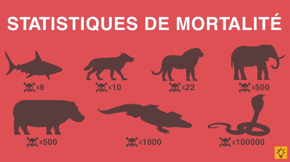animaux sauvages statistiques