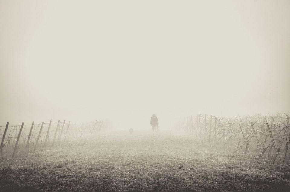 brouillard homme champ epouvantails