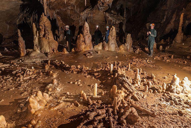 homme de néandertal maisons