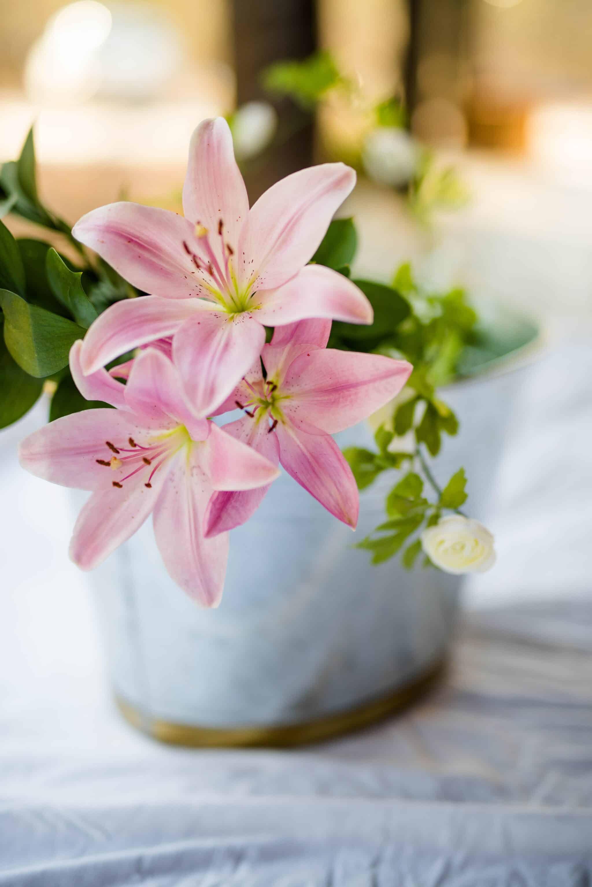 lys symbolic flowers