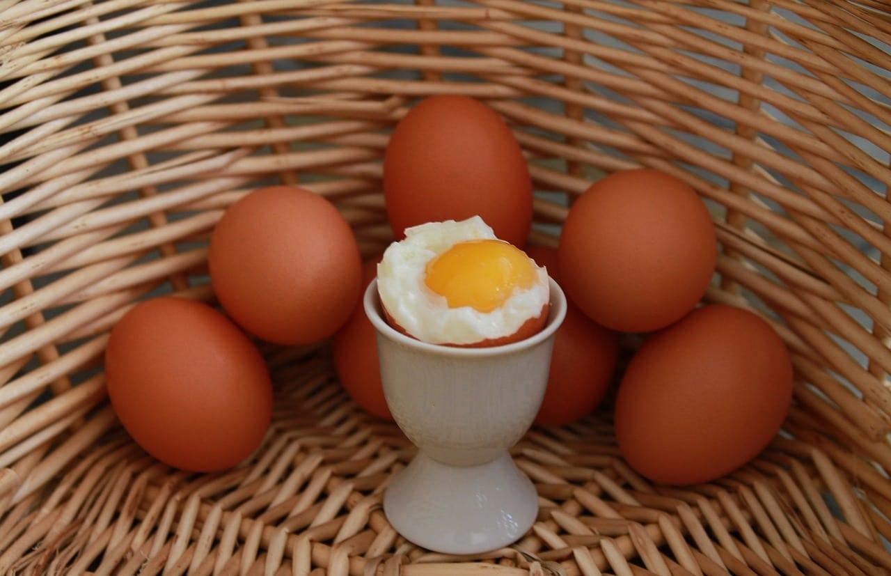 œuf à la coque façons cuire