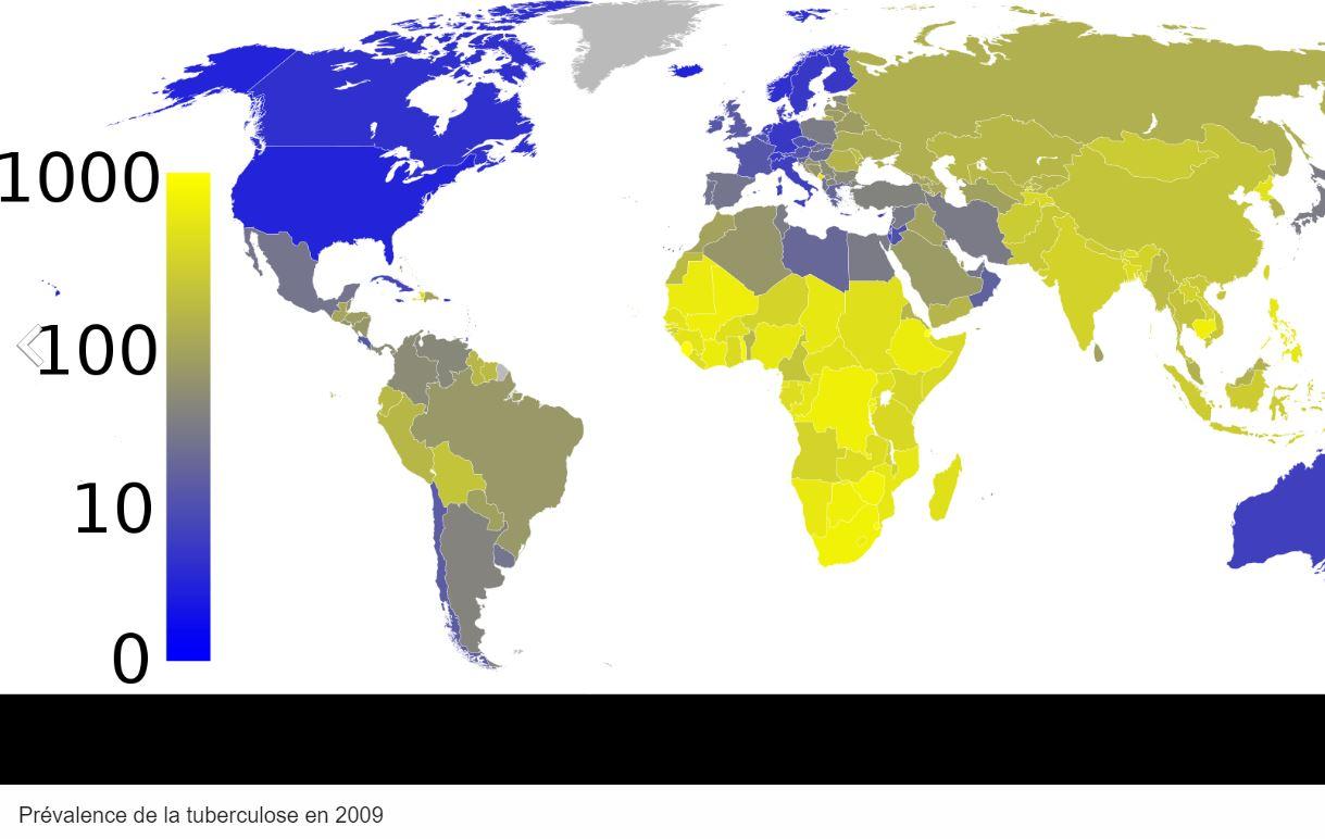 tuberculose carte monde maladie épidémies coronavirus