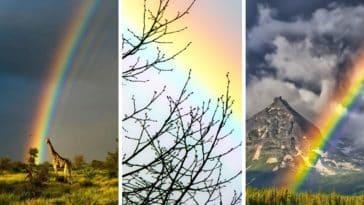 magnifiques photos arc en ciel