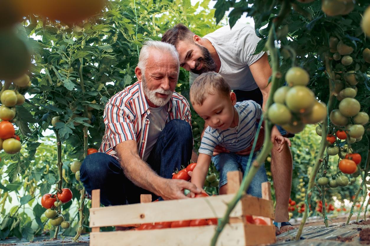 personne âgée lien social nature jardinbien-être