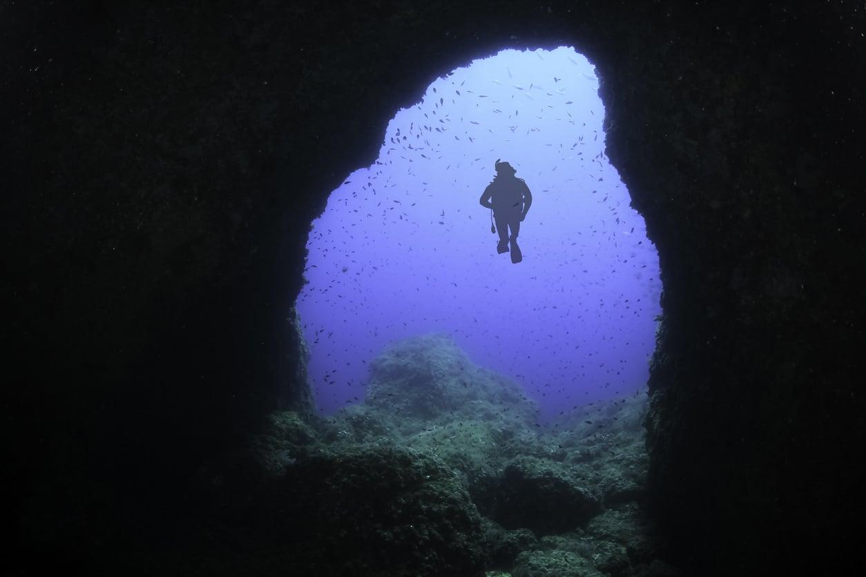 histoire terrifiantes océan plongée poisson fond marin