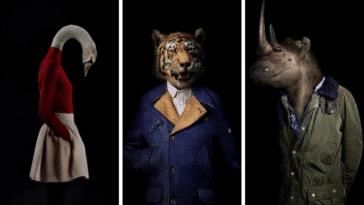 portraits animaux réaliste mode habillés
