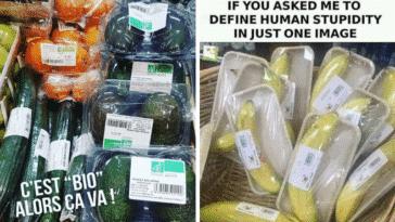emballage plastique bête bêtise nature environnement suremballage produit alimentaire