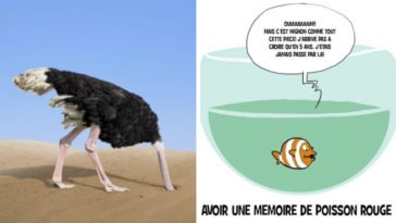 animaux idées reçues croyances fausses nature