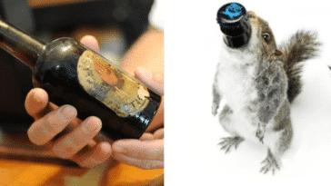 bières les plus chères du monde mousse rousse ambrées blonde arctic