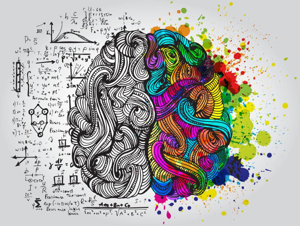 gauchers statistiques cerveau